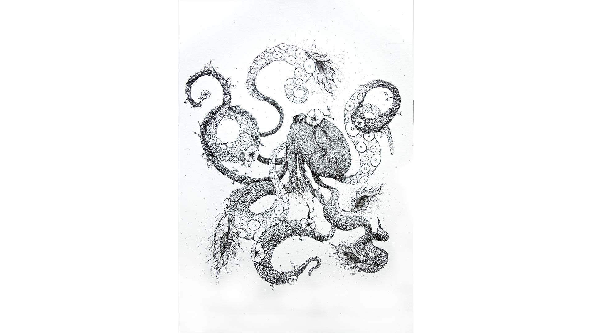 Illustration-octopus